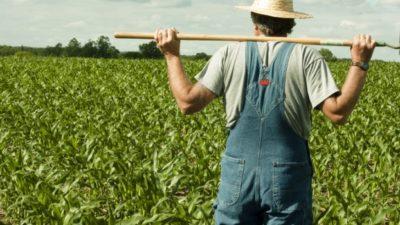 Çiftçiye Kredi Kartı Veren Bankalar