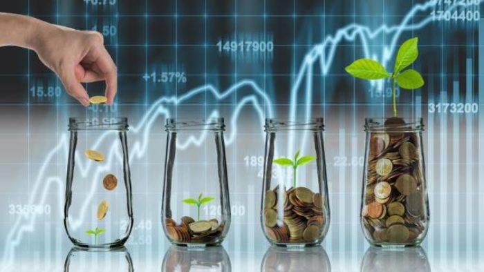 B Tipi Yatırım Fonu Nedir?