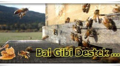 2019 Yılı Arıcılık Hibe ve Destekleri