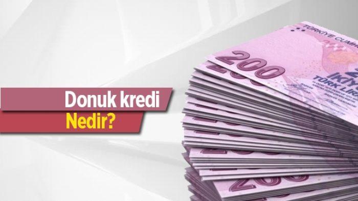 Donuk Alacak Niteliğindeki Kredi ve Diğer Alacaklar Nedir?