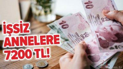 İŞKUR'dan İşsiz Anneye 7200 TL Harçlık