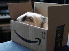 Amazon Prime İptal Etme Nasıl Yapılır | bilgibankan.com